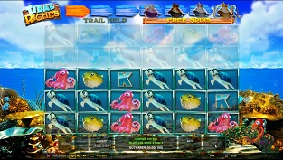 Gala spins slingo rainbow riches